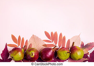 Natural composition of dry pink leaves and pears on pink background. Autumn harvest concept