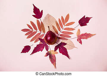 Natural composition of dry pink leaves. Pear on pink background. Autumn harvest concept