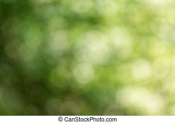 natural, confuso, verde, fondo.