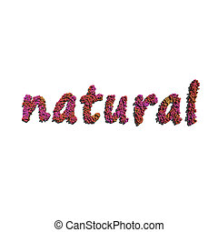 natural create by red color flowers white background