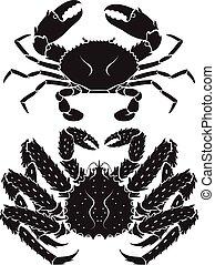 natural de alaska, rey, vector, crab., illustrations.