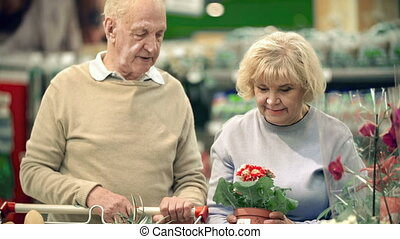 Natural Decoration - Tilt down the couple of elderly...
