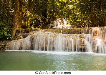 Natural deep forest waterfalls
