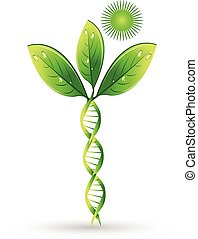 Natural DNA plant concept, can refer to alternative medicine, crop gene modification. Medical symbol vector icon