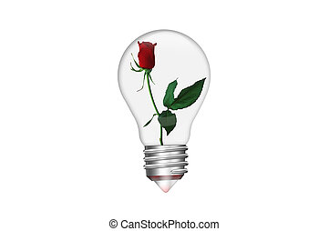 Natural energy concept. Light bulb in shape of heart with red rose inside isolated on white