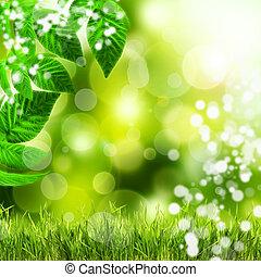 natural, experiência verde