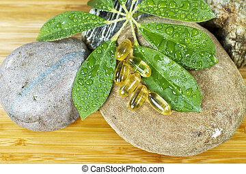 Natural Fish Oil - Fish oil capsules on green plant and ...