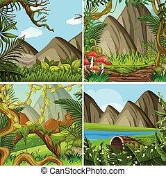 natural, floresta, paisagem