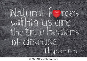 Natural forces within us are the true healers of disease - ancient Greek physician Hippocrates quote written on chalkboard with red heart symbol