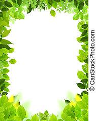 Natural design template. Naturel heart frame.