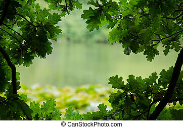 Natural frame nature background - Picture of a lake ...