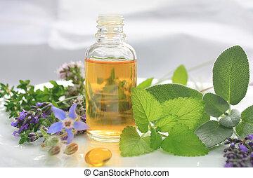 Natural fresh herbs - Fresh herbs and oil. Natural medicine
