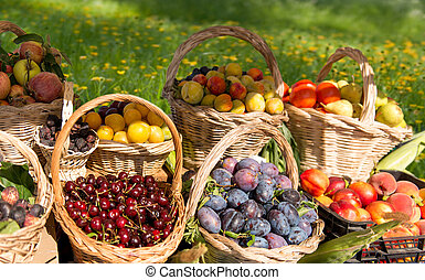 Fruit baskets in the middle of a filed