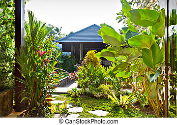 Natural garden with green plants and lawn