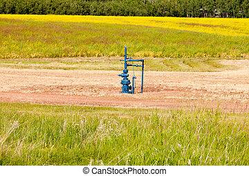 Natural gas wellhead in a meadow of green grassland field agricultural farmland in Alberta, Canada