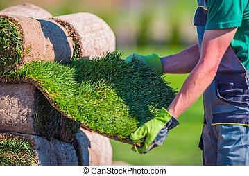 Natural Grass Turf Check
