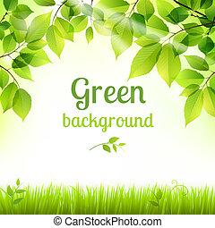 Natural green fresh foliage background
