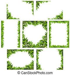 Natural green leaf frame - Various natural green leaf frame...
