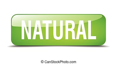 natural green square 3d realistic isolated web button