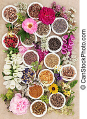 Natural Herbal Medicine - Herb and flower selection used in...