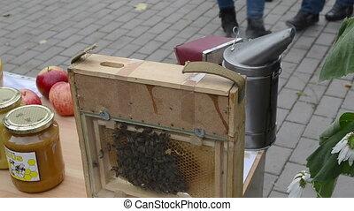 natural honey bee comb - fresh natural honey bee family comb...
