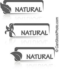 natural, iconos, hoja, naturaleza, símbolos, vector, rectángulo