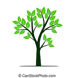 natural, illustration., árbol, leaves., vector, verde