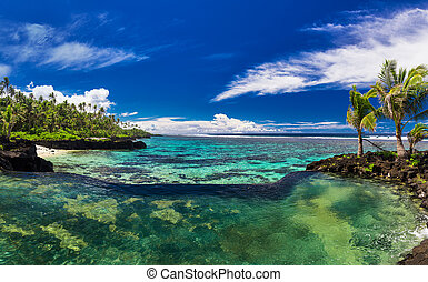Natural infinity rock pool with palm tree over tropical ocean lagoon