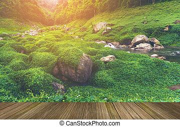 natural, khao, mundo, yai, sitio, herencia, tailandia, paisaje