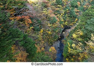 Natural landscape in autumn