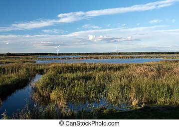 Natural landscape on Fischland in Germany