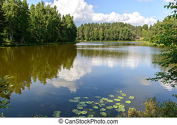 Natural landscape with a lake. Russia