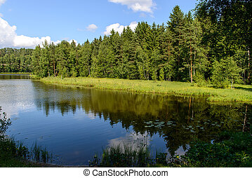 Natural landscape with a lake