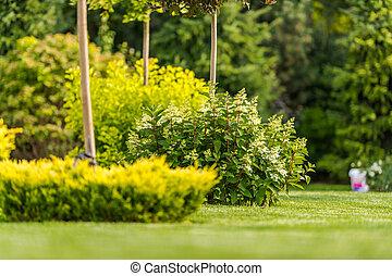 Natural Landscaping Design Of Garden.