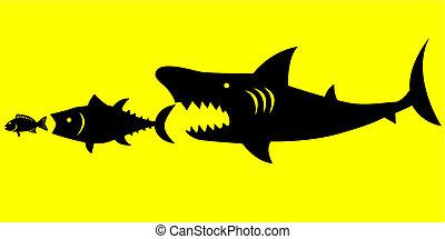 Natural Law - Big fish prey on smaller fish