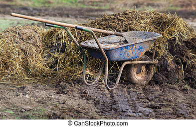 Natural manure - Carts with natural cow manure standing on...