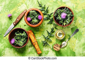 natural, medicina herbácea