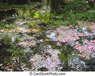Natural Monet - An incredible beautiful aspect of a spring ...