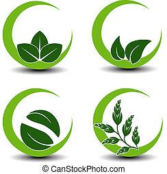 natural, natureza, -, símbolos, vetorial, folha, circular, ícone