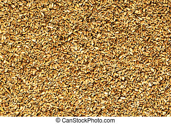 natural oat grains background, closeup