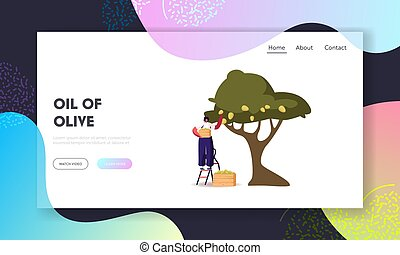 Natural Oil Production Landing Page Template. Woman Collecting Ripe Olives from Tree Branch with Green Berries and Leaves in Wooden Box. Female Character Harvesting Crop. Cartoon Vector Illustration