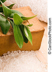 Natural Olive Soap With Fresh Branch