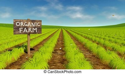 Natural organic eco farming field cinemagraph - Wooden sign...