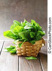 natural organic green spinach