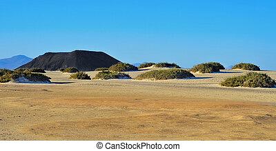 Natural Park of Corralejo in Fuerteventura, Spain