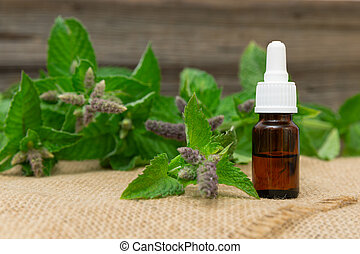 Natural peppermint essential oil in a glass bottle with fresh mint leaves on wooden background