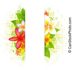 natural, plano de fondo, con, flor