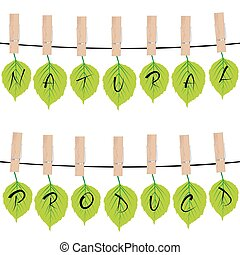 Natural product concept with green leaves hanging on rope in cloth pegs