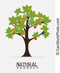 natural product design over grey background vector ...