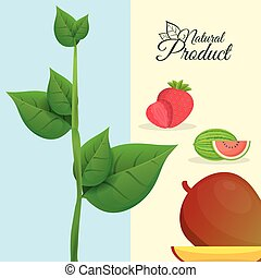 natural product fruit poster